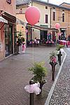 Foto Miss Italia - Selezioni Fontanellato 2008 Selezioni_Miss_Italia_107