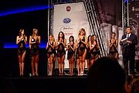 Foto Miss Italia 2012 - Miss Parma Miss_Parma_2012_422