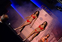 Foto Miss Italia 2012 - Miss Parma Miss_Parma_2012_474