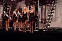 Foto Miss Italia 2012 - Miss Parma Miss_Parma_2012_694