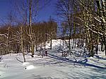 Foto Monte Pelpi Monte_Pelpi_014