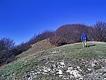 Foto Monte Pelpi Monte_Pelpi_090