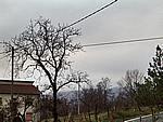 Foto Monte Pelpi Monte_Pelpi_094
