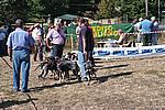 Foto Mostra Canina 2008 - Bedonia Mostra_Canina_2008_004