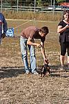 Foto Mostra Canina 2008 - Bedonia Mostra_Canina_2008_015
