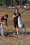 Foto Mostra Canina 2008 - Bedonia Mostra_Canina_2008_016