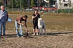 Foto Mostra Canina 2008 - Bedonia Mostra_Canina_2008_017