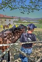 Foto Mostra Cavallo Bardigiano 2012 Cavallo_bardigiano_2012_001