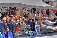 Foto Mostra Cavallo Bardigiano 2012 Cavallo_bardigiano_2012_008