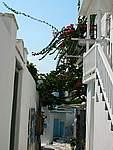 Foto Mykonos 2006 Mykonos 2006 177