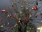 Foto Natale 2006 - Mercatini Mercatino di Natale 2006 003
