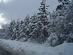 Foto Nevicata 2005 Neve di Natale 2005 001