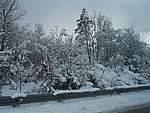 Foto Nevicata 2005 Neve di Natale 2005 023