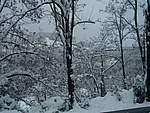 Foto Nevicata 2005 Neve di Natale 2005 041