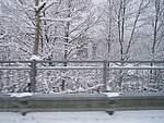 Foto Nevicata 2005 Neve di Natale 2005 055