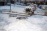 Foto Nevicata 2008 Prima_neve_2008_25