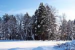 Foto Nevicata 2009 - il meglio Neve_2009_005