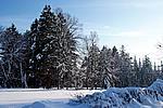 Foto Nevicata 2009 - il meglio Neve_2009_006