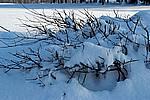 Foto Nevicata 2009 - il meglio Neve_2009_007