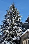 Foto Nevicata 2009 - il meglio Neve_2009_019