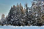 Foto Nevicata 2009 - il meglio Neve_2009_024