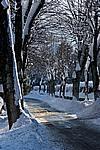 Foto Nevicata 2009 - il meglio Neve_2009_027