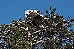 Foto Nevicata 2009 - il meglio Neve_2009_028