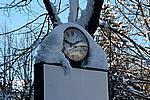 Foto Nevicata 2009 - il meglio Neve_2009_030