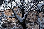 Foto Nevicata 2009 - il meglio Neve_2009_068