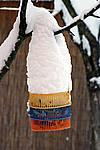 Foto Nevicata 2009 - il meglio Neve_2009_095