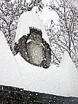 Foto Nevicata 2009 Nevicata_2009_043
