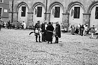 Foto Palio di Parma 2014 Palio_Parma_2014_029
