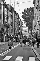 Foto Palio di Parma 2014 Palio_Parma_2014_052