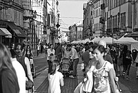 Foto Palio di Parma 2014 Palio_Parma_2014_157