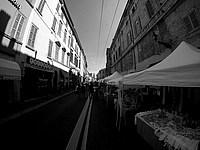 Foto Palio di Parma 2015 Palio_Parma_2015_006