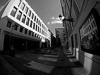 Foto Palio di Parma 2015 Palio_Parma_2015_021