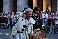 Foto Palio di Parma 2015 Palio_Parma_2015_586