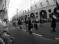 Foto Palio di Parma 2015 Palio_Parma_2015_605