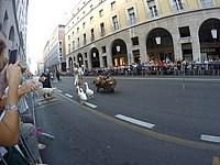 Foto Palio di Parma 2015 Palio_Parma_2015_627