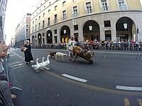 Foto Palio di Parma 2015 Palio_Parma_2015_628