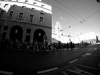 Foto Palio di Parma 2015 Palio_Parma_2015_801