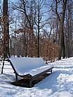 Foto Parma Parma sotto la neve 2005 36