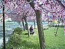 Foto Pasqua 2004 003-Pasqua