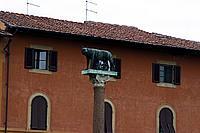 Foto Pisa Pisa_065