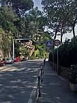 Foto Portofino e Santa Margherita Alle spalle Portofino