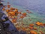 Foto Portofino e Santa Margherita Portofino e Santa Margherita 024