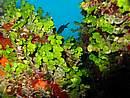 Foto Puglia 2004 Puglia_Otranto_2004_16