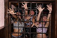 Foto Ragazze del Coyote 2008 - Pub Bertorella Coyote_237