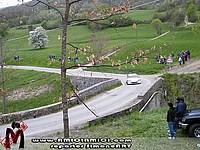 Foto Rally Val Taro 2010 - PS2 SimoneART taro_2010_ps2_simoneart_007