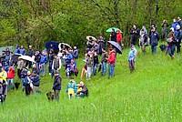 Foto Rally Val Taro 2012 - PS4 Tornolo Rally_Taro_2012_PS4_034